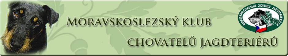 jagdterrierclub.cz